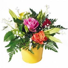fleurs,muguet,1er mai