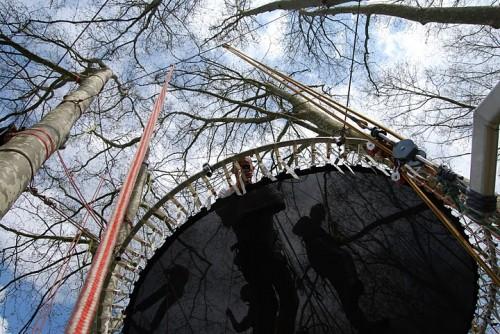 grimpe_d_arbres entre ciel et terre.JPG