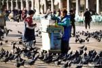 medium_pigeons_à_Venise.jpg